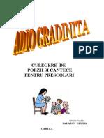 Adio Gradinita