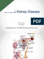 Ckd (chronic kidney disease)