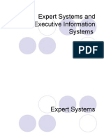 Expert Systems and Executive Information Systems