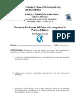 Actividad de encuadre PEDIPI 14.doc