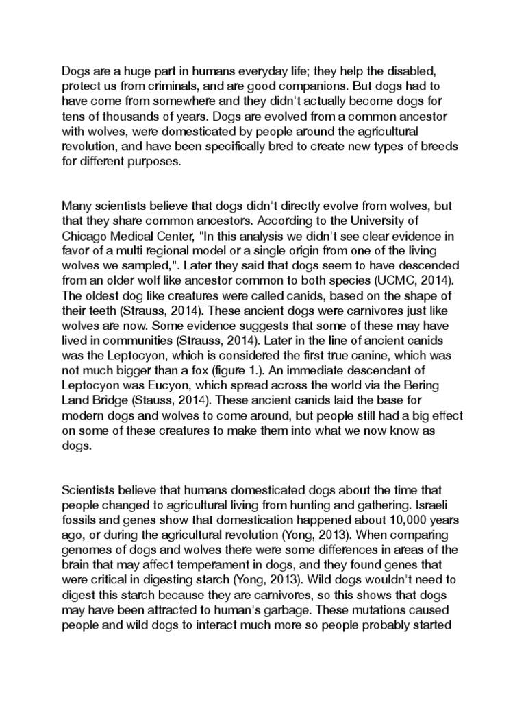 Essay on street children in pakistan