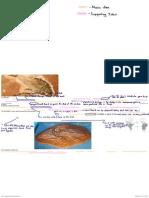 biologos org fossils
