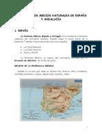 5Los Medios Naturales de España Y Andalucia