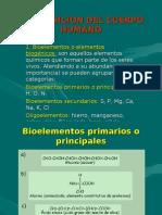 COMPOSICION_DEL_SER_HUMANO_1_1_