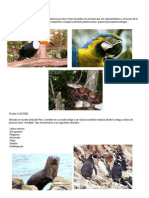Fauna Amazonica