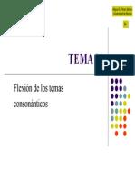 TEMA 21