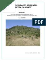 Estudio de Impacto Ambiental-cantera Camones, Santa Ana