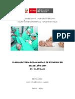 8. Plan Auditoria 2014