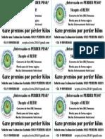 Volantes+RETO+Control++de+Peso.ppt