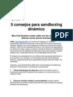 5 consejos para sandboxing dinámico