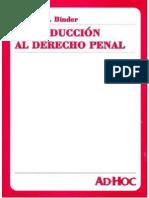 Alberto Binder - Introduccion Al Derecho Penal