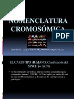 Clase 8 Nomenclatura Cromosomica