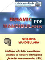 Curs 4 Dinamica Mandibulara