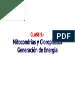 Bioenergetica Clase 9