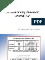 Cálculo de Requerimiento Energetico.2012 - Copia - Copia
