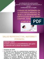 Cuidado de Enfermeria en La Asistencia Prenatal En