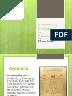 Anatoma y Fisiologa