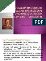 Confederación Nacional de Mujeres Campesinas Indígenas Originarias De