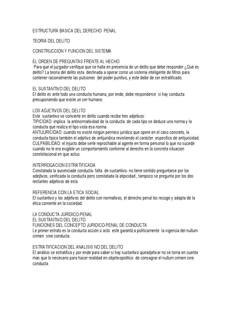 Estructura Basica Del Derecho Penal Docx