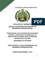 perfil de estructura del proyecto de tesis.docx