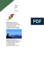 Ejemplos de Verso