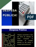 Apresentação de Despesa Pública