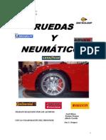 Historia Del Neumatico