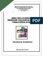Manual TEG Version Abril 2011(1) (1)