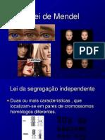 2º Lei de Mendel (1)