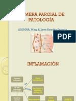Primera Parcial de Patología
