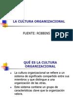Cultura Organizacional I