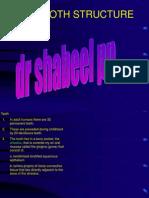 Toothdevelopmenttxt 100401125554 Phpapp02 1