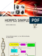 Herpes Simple.docx