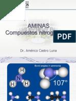 1 Clase - Aminas