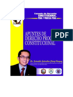 1 Apuntes de Derecho Procesal Constitucional