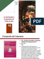 cateq_es_15