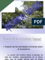 Impacto Humano en El Medio Ambiente
