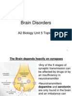 Brain Disorders and Drugs