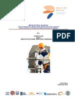 D4 1 QualiShell Curriculum Montator Sisteme Tamplarie