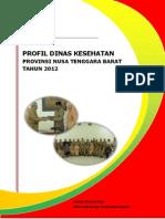 18 Profil Kes.prov.NTB 2012