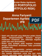 Risk Portfolio