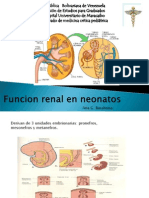 Funcion Renal en Neonatos