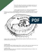 Idea Per Avventura -Diario Dei Webers