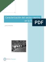 ARGENTINA_Caracterización Sector Caprino