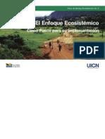 El enfoque ecosistémico cinco pasos para su implementación.pdf