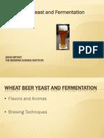 Wheat Beer Yeast Fermentation