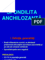 spondilita-20140115-210655