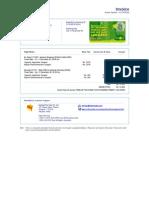 FLT00007976294[1].Invoice