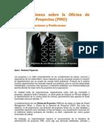 Consideraciones Sobre Pmo PDF
