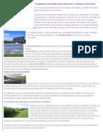 Energía y Recursos Renovables Elaboramos Un Pequeño Mapa Conceptual y Estraer 20 Preguntas